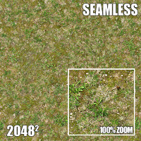 2048 Seamless Dirt/Grass 33