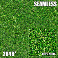 2048 Seamless Dirt/Grass 37