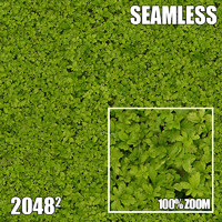 2048 Seamless Dirt/Grass 38