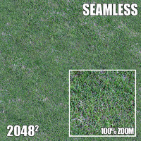 2048 Seamless Dirt/Grass 39