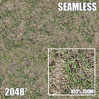 2048 Seamless Dirt/Grass 24