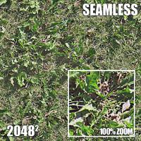 2048 Seamless Dirt/Grass 25