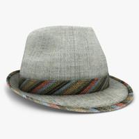 modern hat gray 2 3d model
