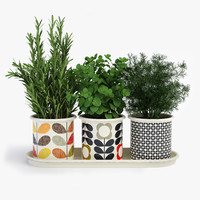 Kitchen Herbs In Pots Orla Kiely