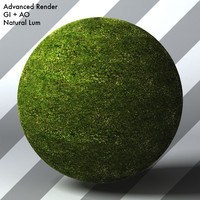 Grass Landscape Shader_021