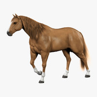 3d model horse light brown fur