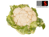 cauliflower ultra hd 8k 3d model