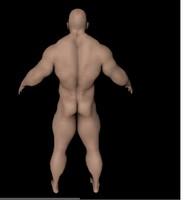 free c4d model gym man