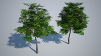Low poly tree 3d model