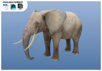 3d model elephant rigged unity