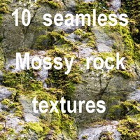 Mossy Rock Collection 12