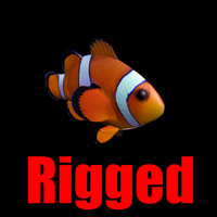 3d model clownfish rigged