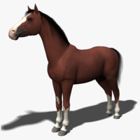 3ds max modeled mane tail