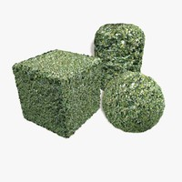Holly Bush Seamless Texture