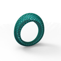 3d geometrical ring model