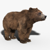 brown bear fur 3d max