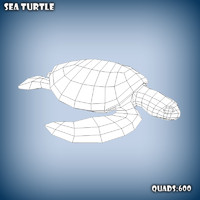 Sea Turtle base mesh