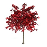 3dsmax red japanese maple