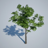 3ds max gaming tree