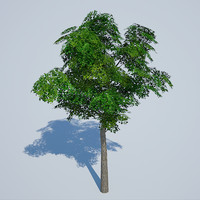 3d gaming tree model