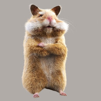 3ds max hamster fur