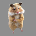 cartoon hamster 3D models