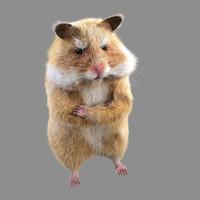 3d obj hamster fur