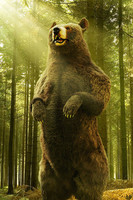 3d photorealistic bear fur