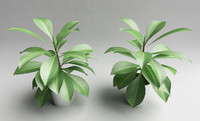 3d decorative plant metal model