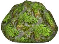 Mossy rock 121