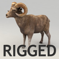 ram rigged biped 3d model