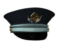 3d model service cap