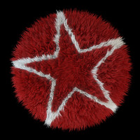 carpet rug star 3d model