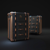 3d richards -trunk-small-chest model