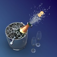 3d model champagne bottle bucket
