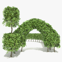 beech hedge elements deciduous tree 3d max