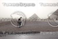 camel+Egypt pyramid
