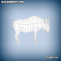 Wildebeest-gnu base mesh