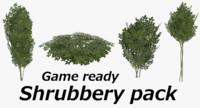 3d ready shrub model