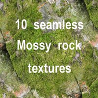 Mossy Rock Collection 13