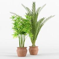 palm 3d obj