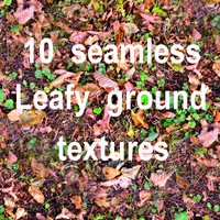 Leafy Ground Collection 3