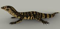 3d monitor lizard varanus