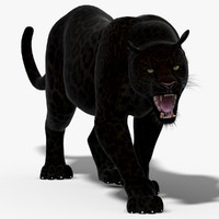 3d black panther cat animation