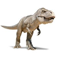 free x model t rex