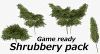3d model ready shrub