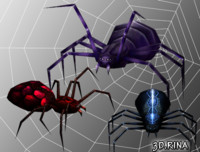 spiders pack animations 3d model