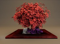 wooden square planter red 3d model