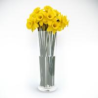 3d max tubular daffodil