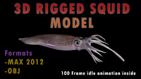 3d model squid realistic animation